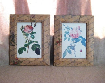 Cottage Chic Floral Frame Pair / Botanical Frame Pair with Reproduction Vintage Rose Prints