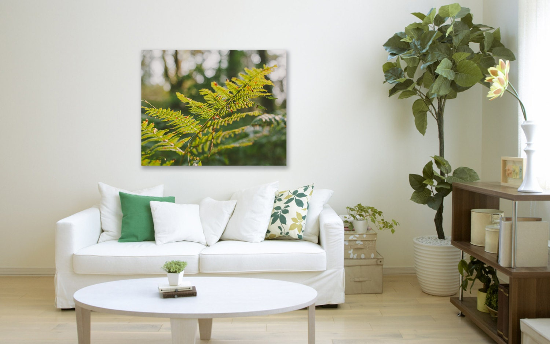 Botanical photography minimalist home decor fern by for Minimalist house items