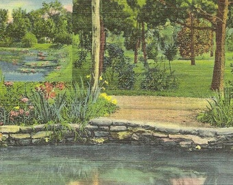 Waterworks Park MEADVILLE Pennsylvania Sections of Trout and Lily Ponds on Vintage Linen Postcard