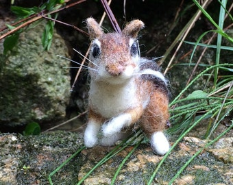 Eastern Chipmunk Life-Sized Needle Felted Wool Animal *Made to Order*