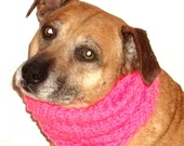 Dog Snood Large Knitted
