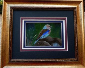 Framed Bird Painting - Lilac Breasted Roller - wildlife, birds, original acrylic painting, rocks, grass