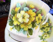 Queens Rosina Teacup Tea Cup and Saucer  - Yellows -  English Bone China 10691