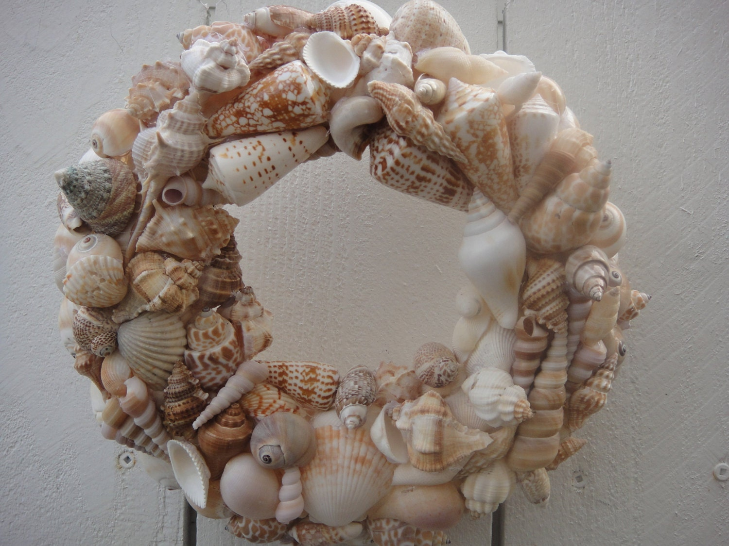Sea Shell Wreath Beach Wreath Sea Shore Decor Nautical