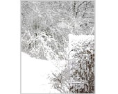 White Winter Garden,  Frosty  White Christmas, Home&Living , Peaceful / Modern / Monochromatic / Graphic Landscape, FREE SHIPPING USA
