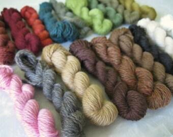 Care of Magical Creatures Charm Bracelet Supply Set - Mini Skeins of Palette Yarn , Bracelet , Jump Rings