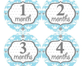 Baby Month Stickers, Monthly Baby Stickers, Baby Girl First Year Stickers, Baby Milestones, Baby Shower Gift, Damask Light Blue Grey 073G