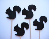 24 Black Squirrel Party Picks - Cupcake Toppers - Toothpicks - Food  Picks no FP447