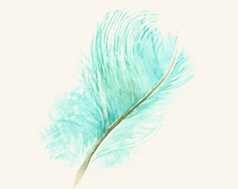 Turquoise Feather Art Print from Original Watercolor