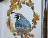 Bird Art Rustic Quail Autumn Splendor Archival Watercolor Print