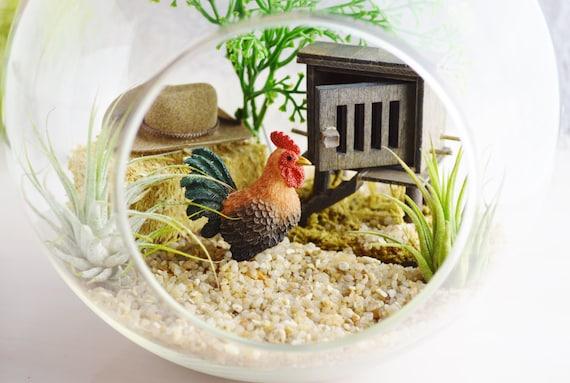 chicken coop terrarium kit 7 glass globe terrarium kit. Black Bedroom Furniture Sets. Home Design Ideas