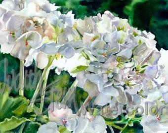 "White Geranium Flowers, Blue, Yellow Green Stems, Pastel Patio Garden Watercolor Painting Print, Wall Art, Home Decor, ""White Geraniums"""