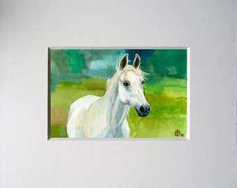 Print of Water color painting. White Horse