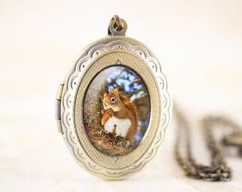 Pine Squirrel Locket Bronze - Squirrel Photo Locket Necklace, Squirrel Animal Jewelry Locket