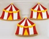 Circus tent cookies, 12 handmade & iced