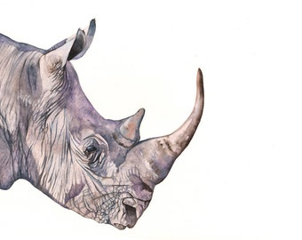 Rhinoceros PAINTING - 2014   Print of watercolor painting A4 size