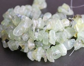 SALE - Prehnite Large Chip Beads 15mm FULL STRAND (15 Inches)