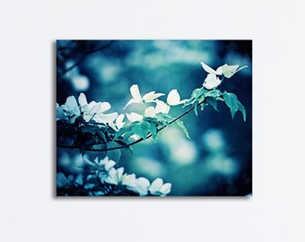 """Navy Canvas Wrap, dark blue white flowers dogwood photography large floral photography nature gallery wrapped canvas, """"Dogwood by Moonlight"""""""