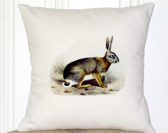 """shabby chic, feed sack, french country, vintage rabbit illustration 14"""" x 14"""" with contrast backing pillow sham."""