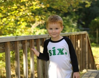kid's birthday shirt - Kid's personalized NUMBER raglan baseball shirt - first, second, third, fourth, fifth, sixth, etc - you choose colors