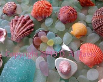 11 x 14 Beach Sea Glass Art Print Photo Print - Lovin Spoonful