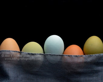 Multicolored Eggs in a Row, Colorful Eggs Photo, Big Canvas Gallery Wrap, Fine Art, Still LIfe Photography, Easter Gift