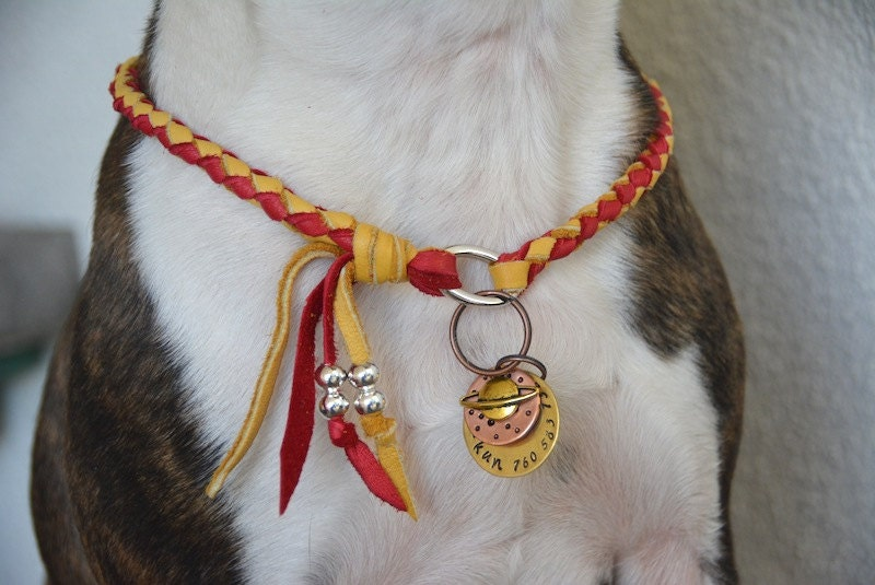 Dog Collar Necklace id Tag