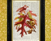 Fall Oak Leaves and Acorns Print - Dictionary Page Art Print - Recycled Up-cycled Vintage Book Page Art