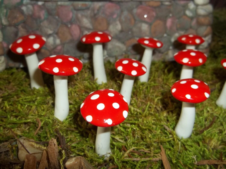 Gnome Garden: 8 Fairy Garden Miniature Mushrooms Toadstools Terrarium Gnome