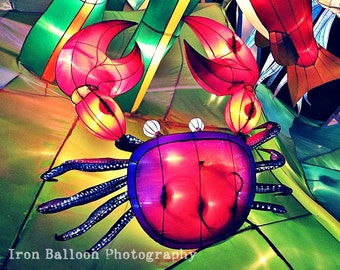 NEON PINK CRAB Art Photo