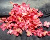 Silk Flower -150 Teeny Tiny Hydrangea Blossoms- Shades of Pink