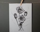 art print black and white reproduction of ink drawing floral studiobotanica home office bedroom library study gray white
