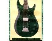 Krist Novoselic bass nirvana  guitar art print ,music art gift for guy musician hipster boyfriend gift