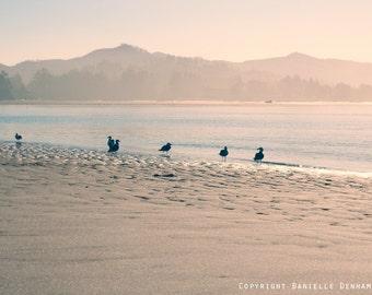 Beach Photography Oregon Coast Seagulls Pastel--Fine Art Lomography 8x12