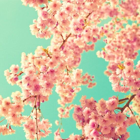 Https Etsy Com Listing 189803514 Spring Decor Cherry Blossom Photography