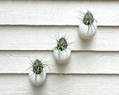 Set of 3 Hanging Matte White Ceramic Planters, Hanging Ceramic Planters, Egg Planters, Hanging Plant Holders, Hanging Air Plant Terrariums
