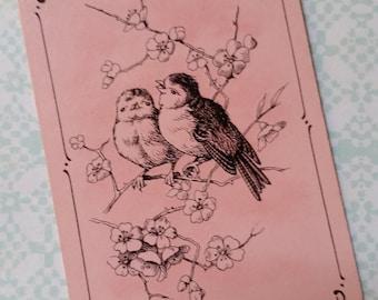 Gorgeous Antique German Pink Bird Cards
