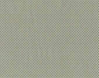 SAVE on 2.4 bolt end--Crosshatch--PERRYMINT by Dear Stella--Green
