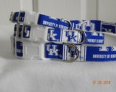 University of Kentucky adjustable dog collars