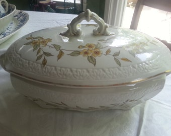 T & R Boote Covered Ironstone Tureen, Aesthetic Movement English Transferware
