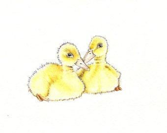 "Pair of Duckies art print of an original drawing available 5x7"" or 8x10"""