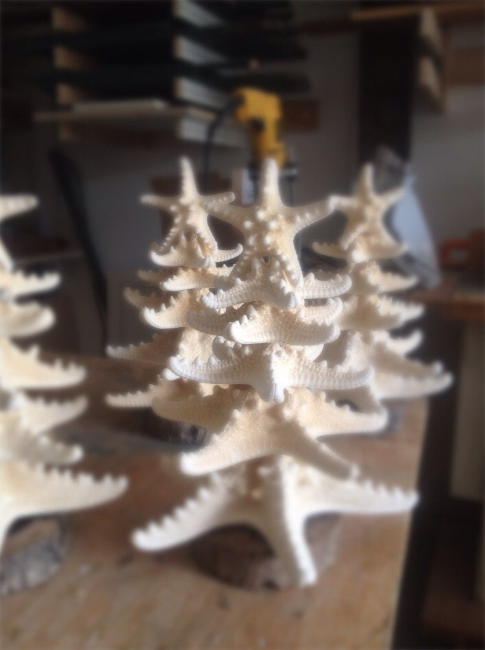 Beach Decor / Starfish Christmas Trees   Green Life