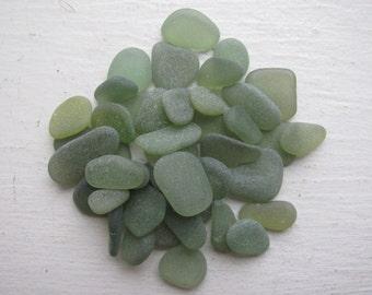 40 small olive green genuine sea glass  beach glass genuine sea glass