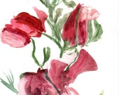 Note Cards, Watercolor Prints - April Sweet Peas