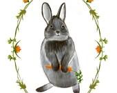 Rabbit Illustration Art Print with Decorative Border