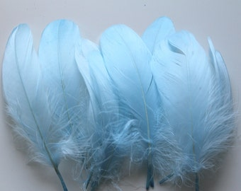 Light Blue Goose Nagoire Feathers / 10 Loose Feathers