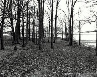 Fort Henry and the River, Fine Art Photography, Civil War Battlefield, Nature Photography, Landscape, Black and White