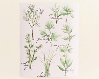 Culinary Herb Print