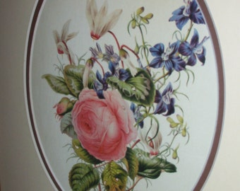 Flora Art Matted Framed Print Roses & Violets