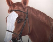 Chestnut Brown Horse in Portrait Pastel Chalk Drawing Artisr Marylou Grey Signed Matted Large Frame Home Decor Equestrian Wall Hanging